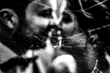 Fotografie realizată de Bogdan Chircan Photographer - #1540810