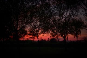 Fotografie realizată de Adi Hadade  - #1577558